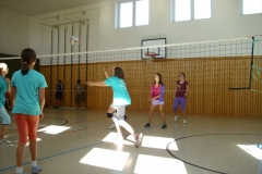 sportwoche_volleyball_2010_20140630_1364037725