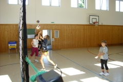 sportwoche_volleyball_2010_20140630_1379387179